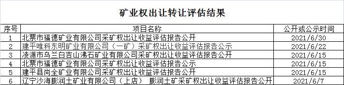 朝阳市自然资源局矿业权评估6月份结果统计.jpg